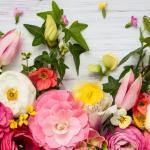 A virág horoszkópból megtudhatod, ki illik hozzád!
