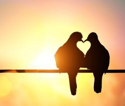 A Vízöntő és a párkapcsolat