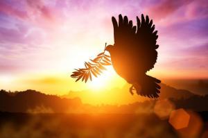 A Rák-telihold békét hoz az életünkbe