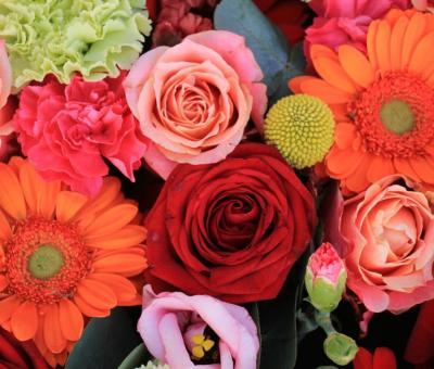 Milyen virág illik a csillagjegyedhez?