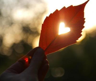 Nagy őszi horoszkóp: szerelem, karrier, egészség