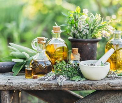 A 6 legjobb gyógynövény emésztési problémákra
