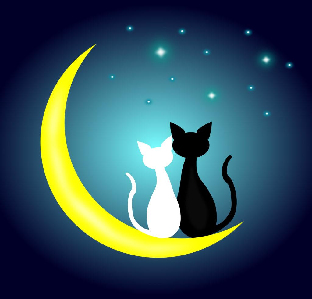 A Hold megmutatja, mennyire illetek össze a pároddal!