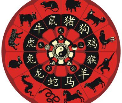 kínai aszcendens