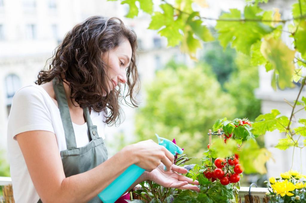 Mit érdemes a balkonládákba ültetni?